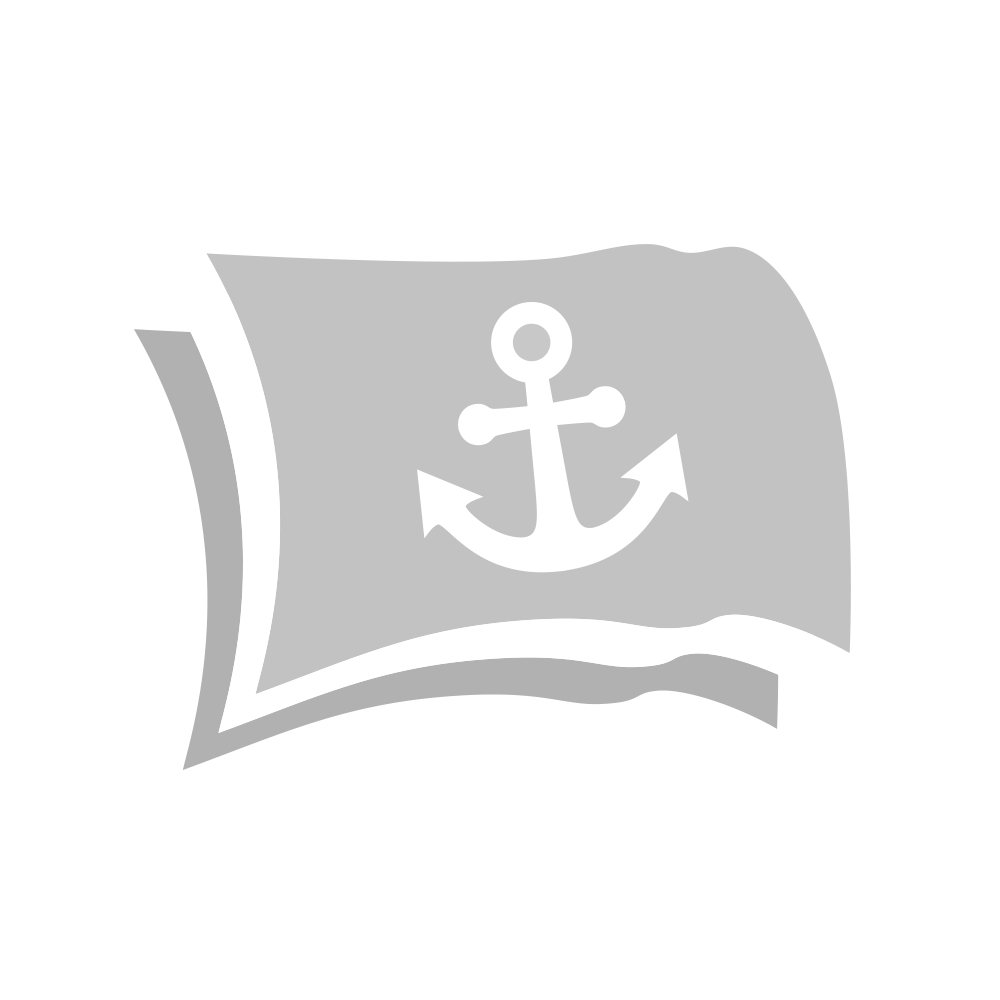 Vlag Amsterdam 30x45 cm. glanspolyester