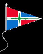 Aardbevingsvlag 20 x 30 cm punt