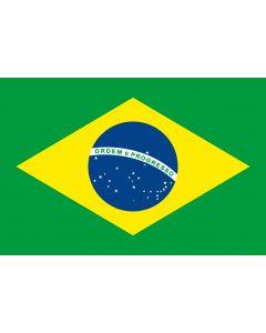 Vlag Brazilië - Glans