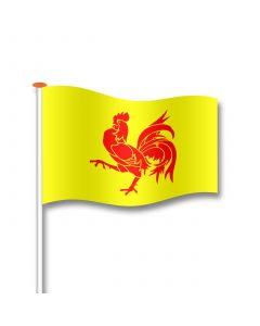 Vlag Franse Gemeenschap